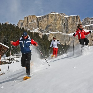 Winter Walks & Ski touring